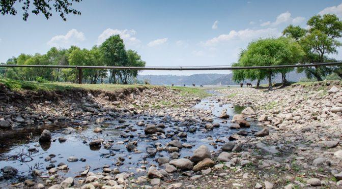 Falta atención a problema de corrupción en la gestión del agua (El Financiero)