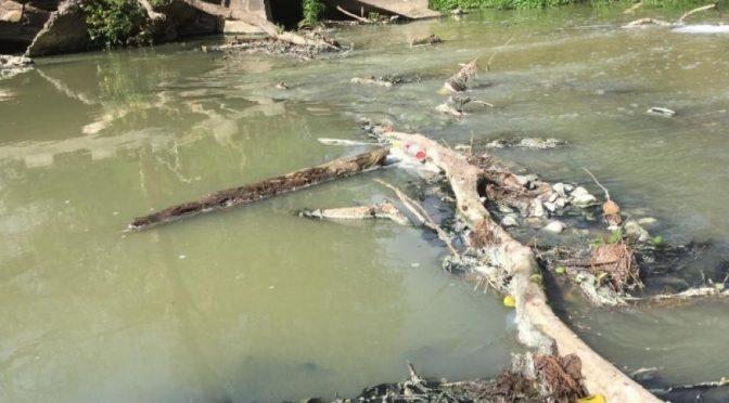 Tamaulipas: Advierten que victorenses beben agua residual procedente de la Presa Vicente Guerrero (El mercurio)