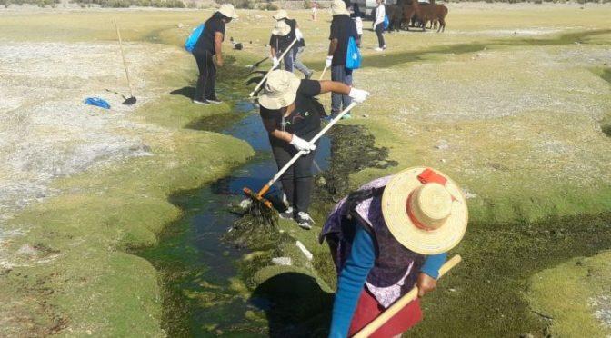 Coca-Cola informa que recuperó el 100% del agua que utilizó con apoyo de comunidades aymara (CNN)