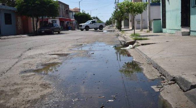 Sinaloa: pestilencia de aguas negras y dengue invaden al Infonavit Playas (El Sol de Mazatlán)