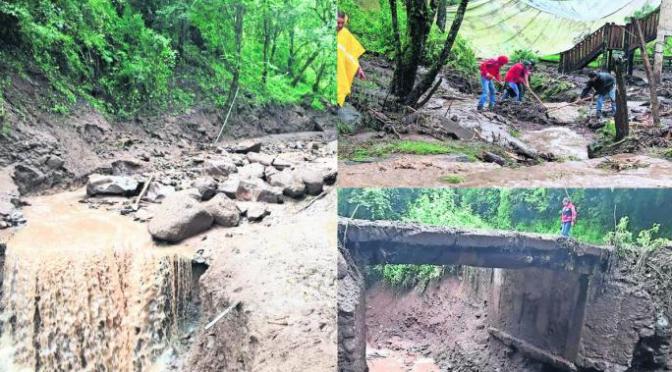 Comunidades del Edomex se quedan sin agua tras deslaves; culpan a la tala clandestina (El Gráfico)