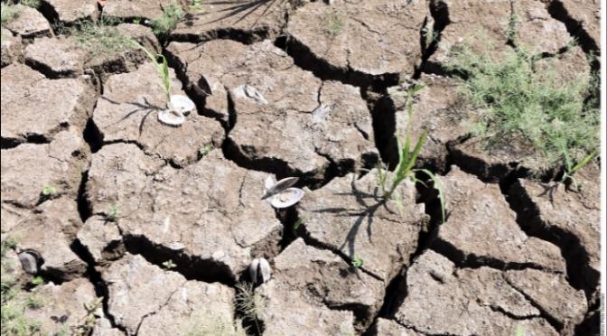 México: Por sequía, limitan agua en 12 estados (El Imparcial)