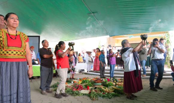 CDMX: ONU-DH aplaude participación de comunidades zapotecas en cuidado del agua en los Valles Centrales (Proceso)