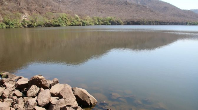 Sinaloa: Decepciona 'Narda' a agricultores; no llenó las presas (Línea Directa)