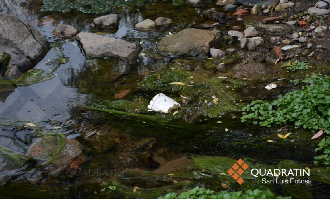 San Luis Potosí: Pobladores de Escalerillas, expuestos a contaminación de río (Quadratin)