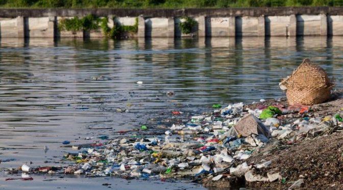La contaminación del agua: todo lo que hay que saber (A24)