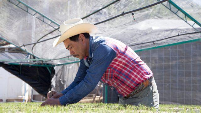 Llaves de agua para todo México (Forbes)
