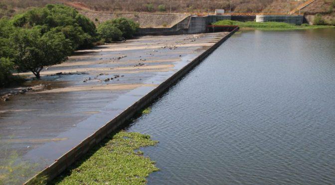 Sinaloa: ¡No hay agua! Siembra de maíz disminuirá un 30% (Línea Directa)