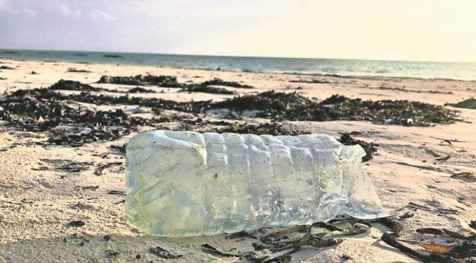 Acusan crisis ambiental en México por 'progreso' (Luces del Siglo)