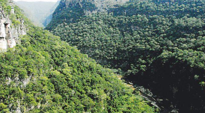 Chiapas: El Ocote También Sufre Afectaciones Por Sequía (Ultimátum)
