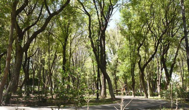 Querétaro: Propone capital línea de abastecimiento de agua (Diario de Querétaro)