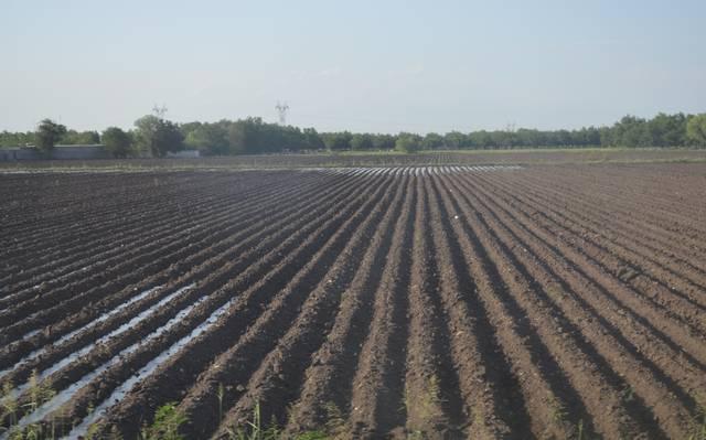 Catastrófico aumentar las cuotas por el agua (El Heraldo de Chihuahua)