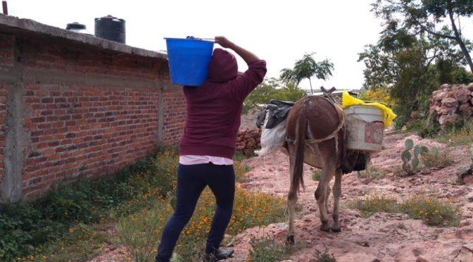 Guanajuato: Sufren en Pocitos de Corrales ante la falta de agua (Periódico Correo)