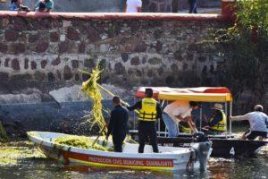 Guanajuato: Sigue plaga en la presa de La Olla (igeteo.mx)