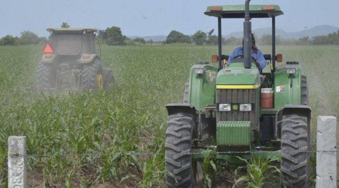 Sinaloa: Agricultura, en incertidumbre por escasez de agua (Debate)
