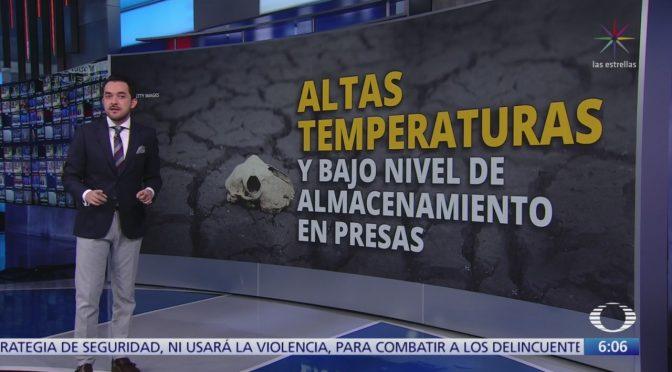 México: Altas temperaturas y escasez de agua  (Noticieros Televisa)
