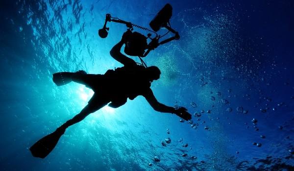 CDMX: Contribuirán buzos mexicanos con construcción de economía oceánica sostenible (El Heraldo de México)