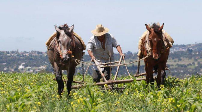 Sinaloa: Morena va por mayor pago en el uso del agua en el campo (La Silla Rota)