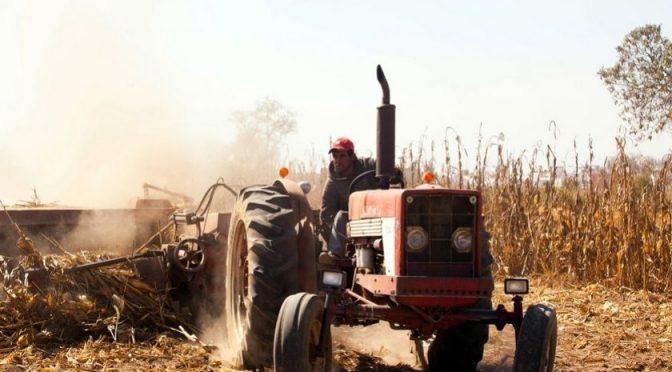 CDMX: Castiga Morena al agro con subida al derecho del uso de agua (AM)