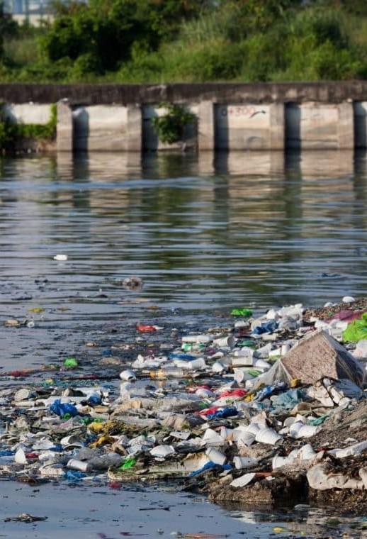 El agua y la sociedad : abastecimiento y contaminación del agua en el área metropolitana de Monterrey, N.L.