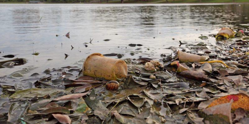 La contaminación en agua dulce pone en riesgo la alimentación, dice la ONU (Expansión)