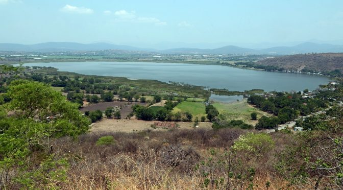Detectan 2,280 tomas clandestinas de agua en seis años; uno de cada 2 acuíferos está contaminado (El Animal Político)