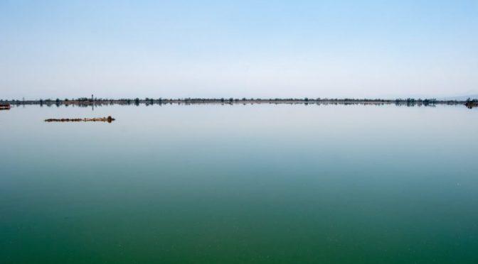 Estado de México: Lanzan licitación para conservación del lago Nabor Carrillo en Texcoco (Obras web)