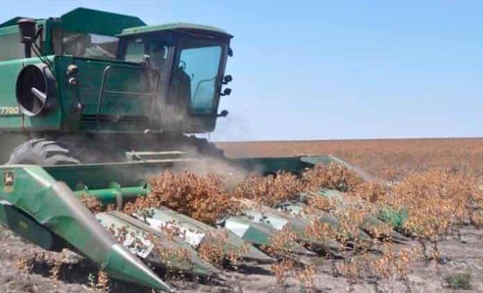 San Luis Potosí: Campesinos pagarán por el uso de agua (Pulso)