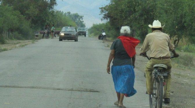 Sonora: Detectan plaguicidas y arsénico en agua y suelo de Pótam (El Imparcial)