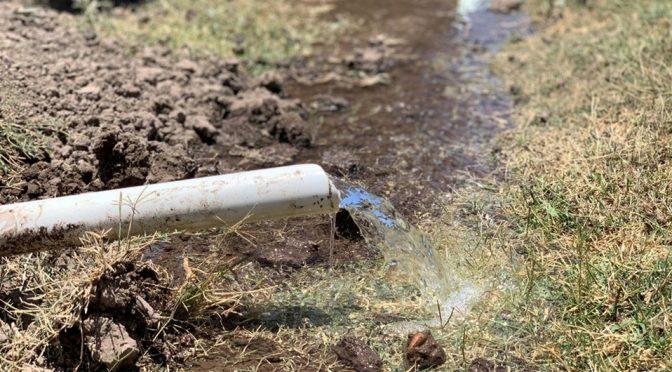 Durango: Ejidatarios sobreviven con agua de lluvia y de abrevadero (Milenio)