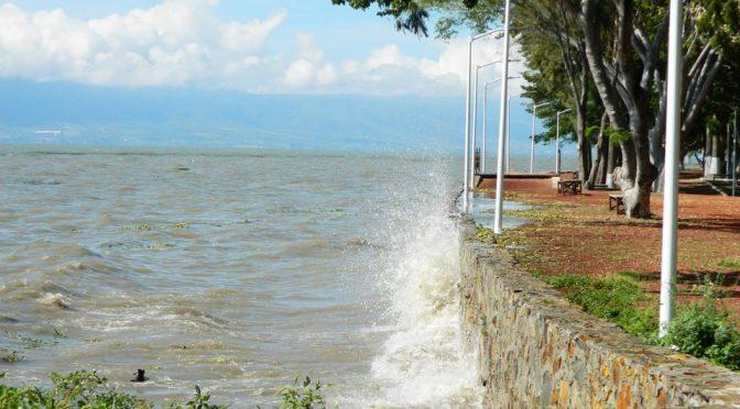 Guadalajara: Preocupa a UdeG la poca captación de agua en el lago de Chapala (Milenio)