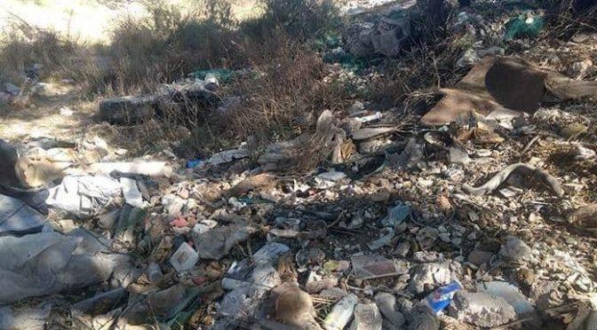 San Luis Potosí: Llaman a limpiar el río Paisanos (Pulso)