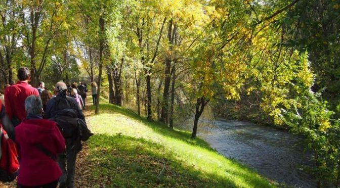 Madrid: Las aguas residuales y el río Manzanares (iagua)
