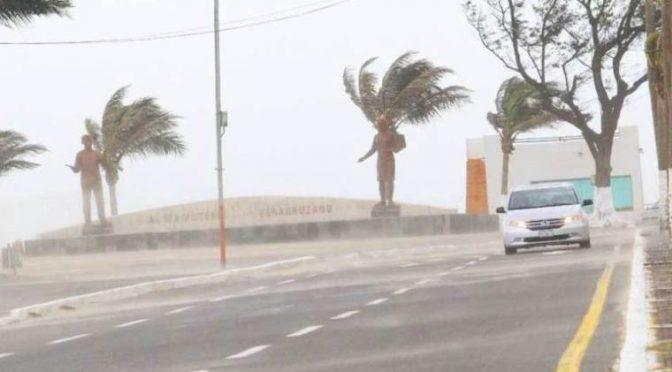 Veracruz: Dañan las lluvias 868 viviendas (La jornada)