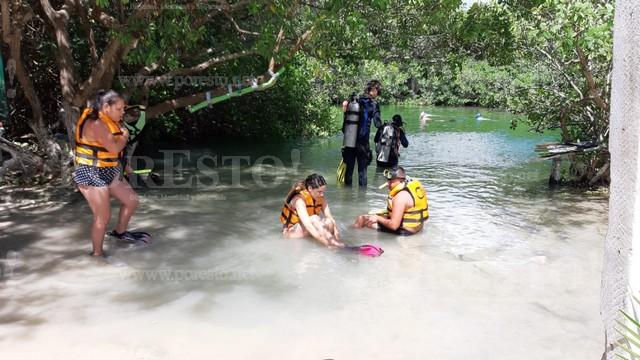 Quintana Roo: Cenotes registran baja turística considerable (PorEsto!)