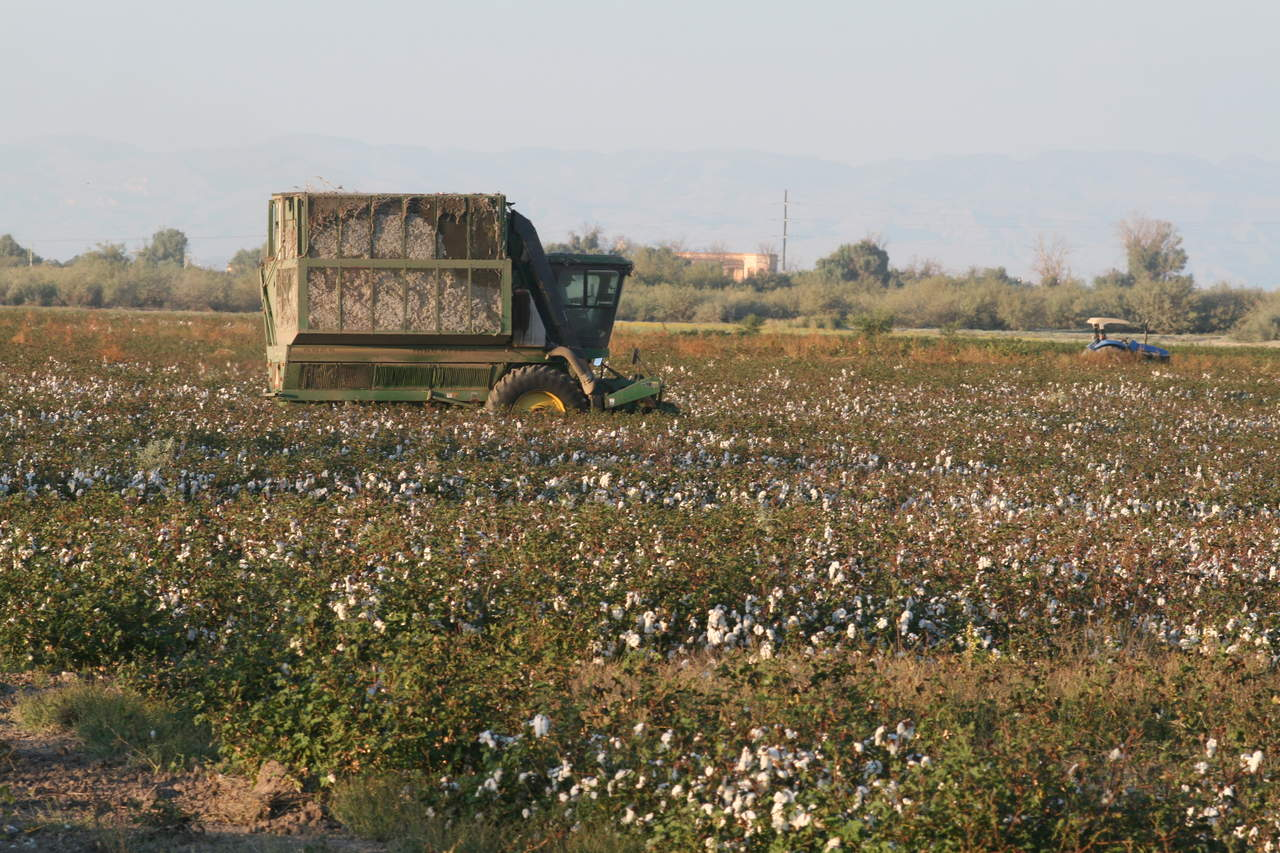 Coahuila: Impuesto al agua, duro golpe para el agro coahuilense (Adictivo Radio)