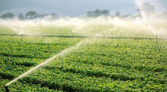 Cobro de agua a campesinos comenzaría hasta julio del 2020 (El Economista)