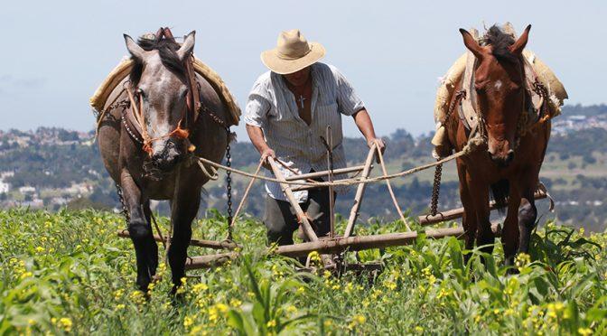 """Iniciativa de cobro de agua a campesinos """"acabaría con el sector agroalimentario"""": Productores (Aristegui Noticias)"""