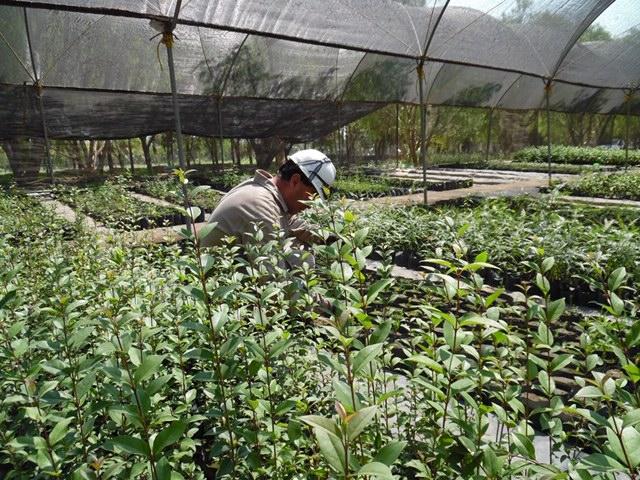 Puebla: Empresa CYCNA de Oriente reporta sus prácticas sustentables en la ONU (desdepuebla.com)