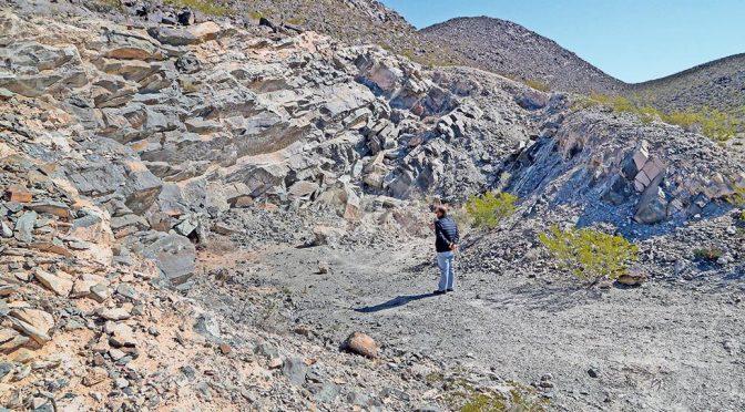 Chihuahua: Alerta estudio por daños ecológicos de mina en Samalayuca (El Diario)
