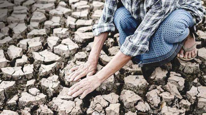 México: Sequía exprime al país; padece sed 40% del territorio mexicano (Excelsior)