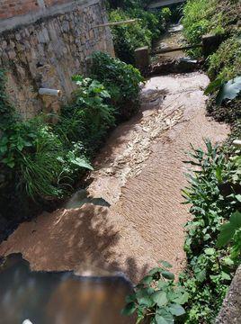 Veracruz: Proliferan moscos por balsas de agua (El Mundo)