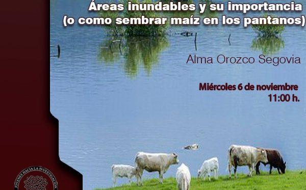 Ciclo de Conferencias: Áreas inundables y su importancia (o como sembrar maíz en los pantanos)
