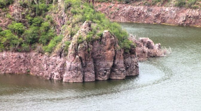 San Luis Potosí: 'La presa de 'El Realito' no ha sido tan funcional como dicen': CANADEVI (Agencia de Noticias)