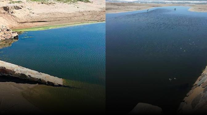 Guerrero: CAPAMA se deslinda de la contaminación por aguas negras (Novedades)