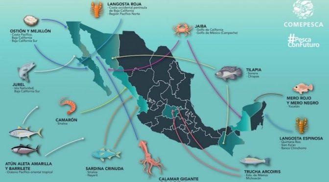 México: El potencial productivo de alimentos: Facetas de México (Gaceta Mexicana)