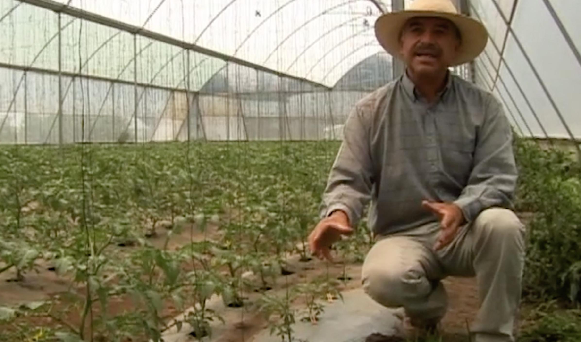 Las otras voces: Xochimancas, granja orgánica (Video)
