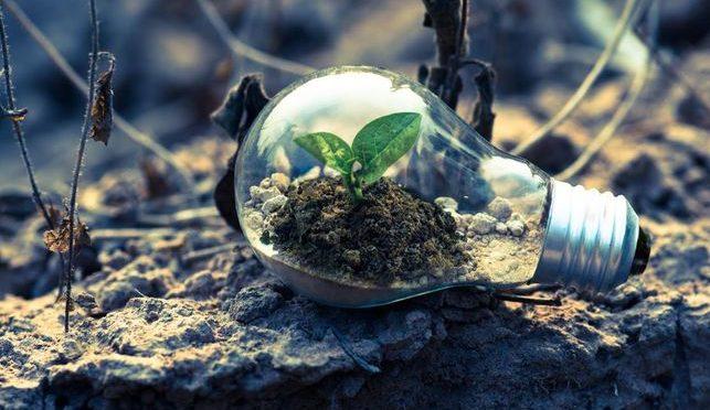 Ecosistemas y resiliencias frente al cambio climático (El extremosur)
