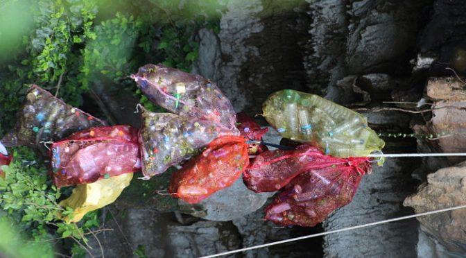 Yucatán: Retiran más de 5 toneladas de basura de 10 cenotes (Informa Yucatán)