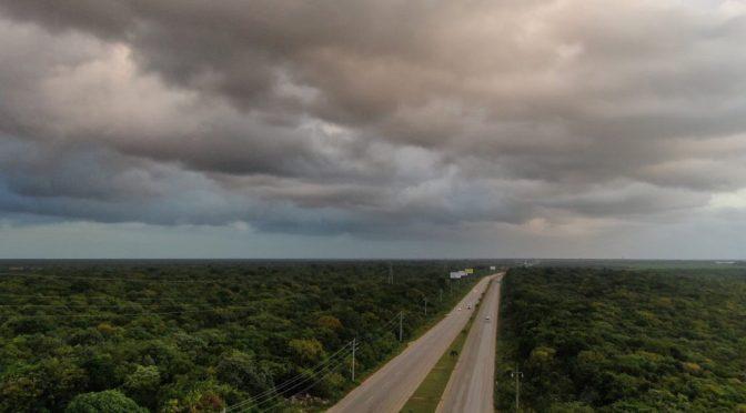 México: Tren Maya fragmentaría 8 áreas naturales protegidas (Pie de Página)